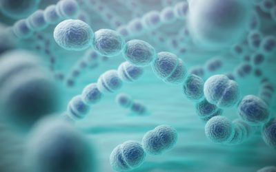 ORAL BACTERIA AND STROKES